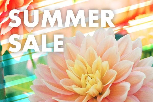 gadb_summer_sale_082020